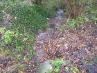Ruisseau cheval Fontbeloux (13) 140