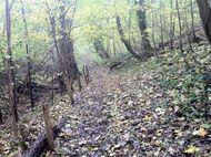Ruisseau cheval Fontbeloux (5) 190