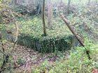 Ruisseau cheval Fontbeloux (9) 140
