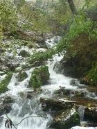 Tiretaine gorges de Royat (13) 290