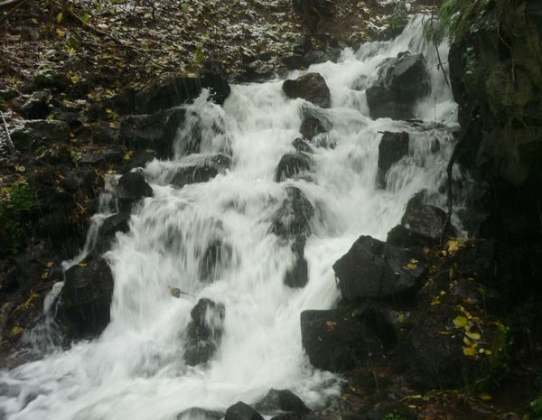Tiretaine gorges de Royat (17)
