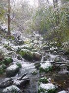 Tiretaine gorges de Royat (25) 140