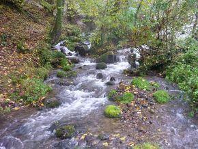 Tiretaine gorges de Royat (6) 290