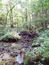 Vallée du Madet.  (11) 190