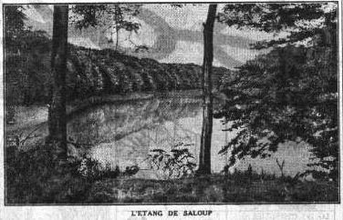 étang de saloup forêt de Tronçais petit parisien