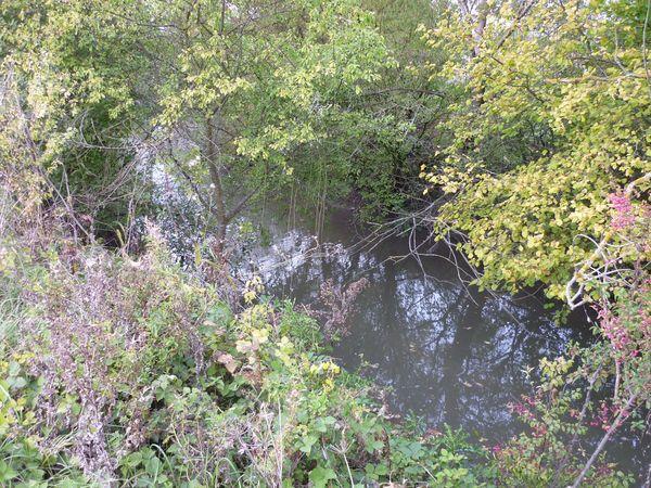 Ruisseau-Buron-2 barnazat