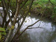 Ruisseau-Buron-4 barnazat 190