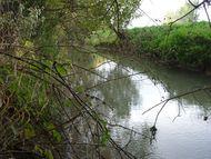 Ruisseau-Buron-5 Barnazat 190