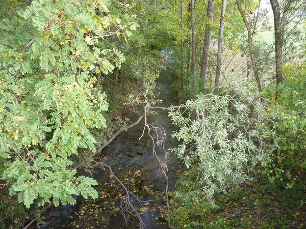 Ruisseau-Buron barnazat-10