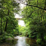 gorge jordanne pont viaduc 190