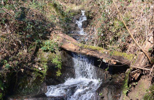 cascade ruisseau des valettes de ternant