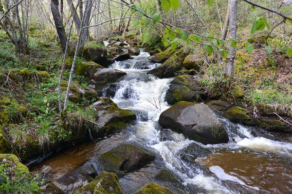 Ruisseau de Gelles amont de la Cascade