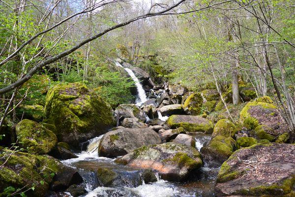 cascade de Say ruisseau de Gelles (1)