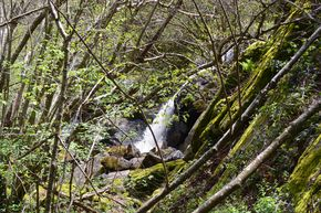 cascade rive gauche