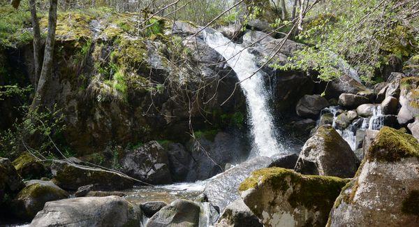 cascade rive vue de la rive gauche