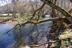 Sioule amont de la confluence avec la Miouze