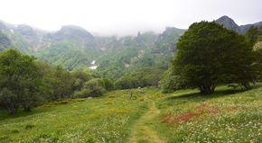 fond de vallée de Chaudefour