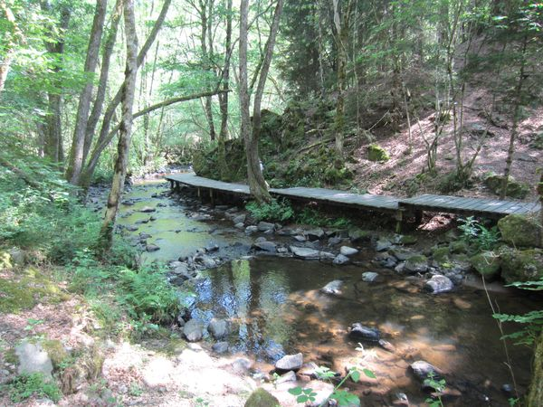 Abords ruisseau Auzelle