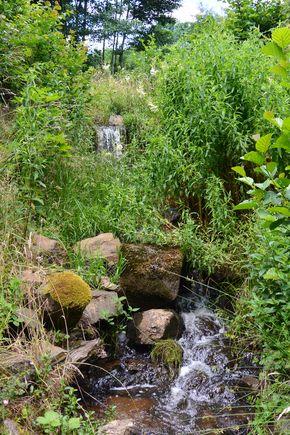 chute ruisseau de Saint Genés Champanelle