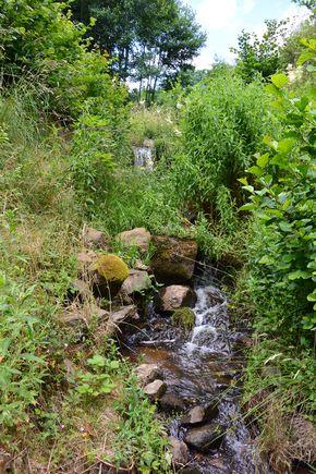 chute ruisseau de Saint Genés