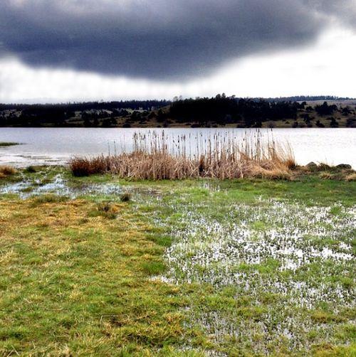Lac du Pêcher zone humide