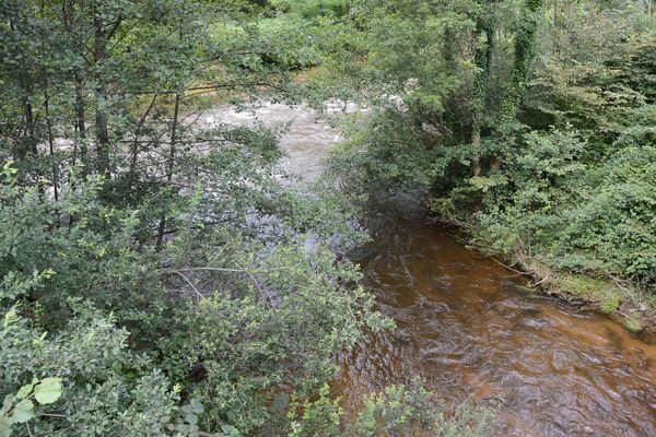 Ruisseau de la Faye confluence avec la Dore