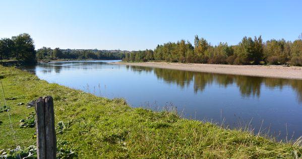 La confluence entre la Sioule et l'Allier