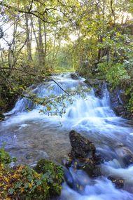 Première cascade saliens
