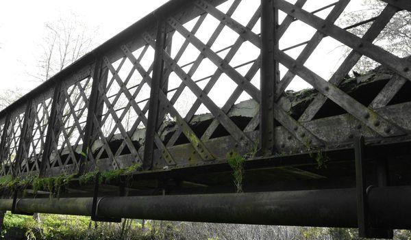 vieux pont metallique de Buxerolles (4)