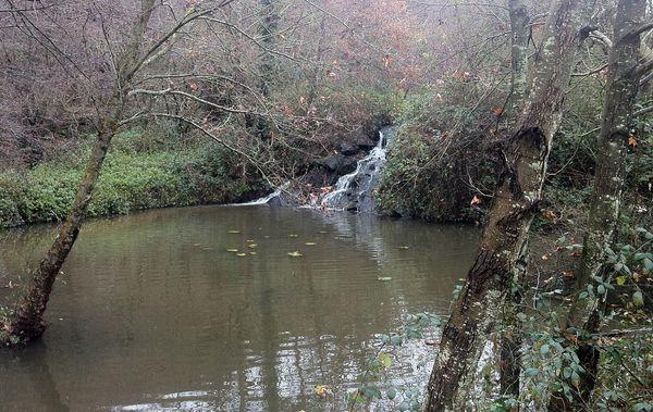 Cascade et bief Néris les bains (1)
