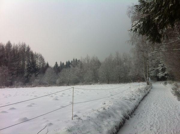 Neige plaine de laschamps (2) 24 jamvier 2015