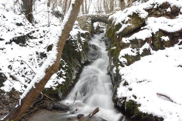 Le courdoulet l'hiver l'Etang chanat la mouteyre (1)