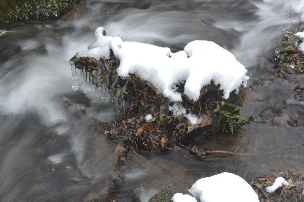 Le courdoulet l'hiver l'Etang chanat la mouteyre (5)
