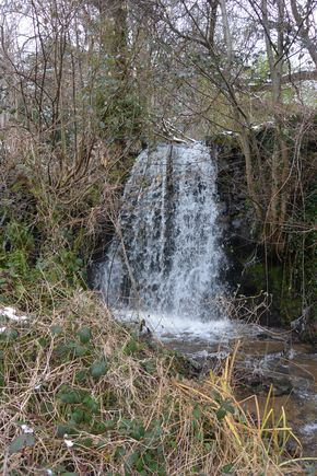 cascade adrienne sayat (1)