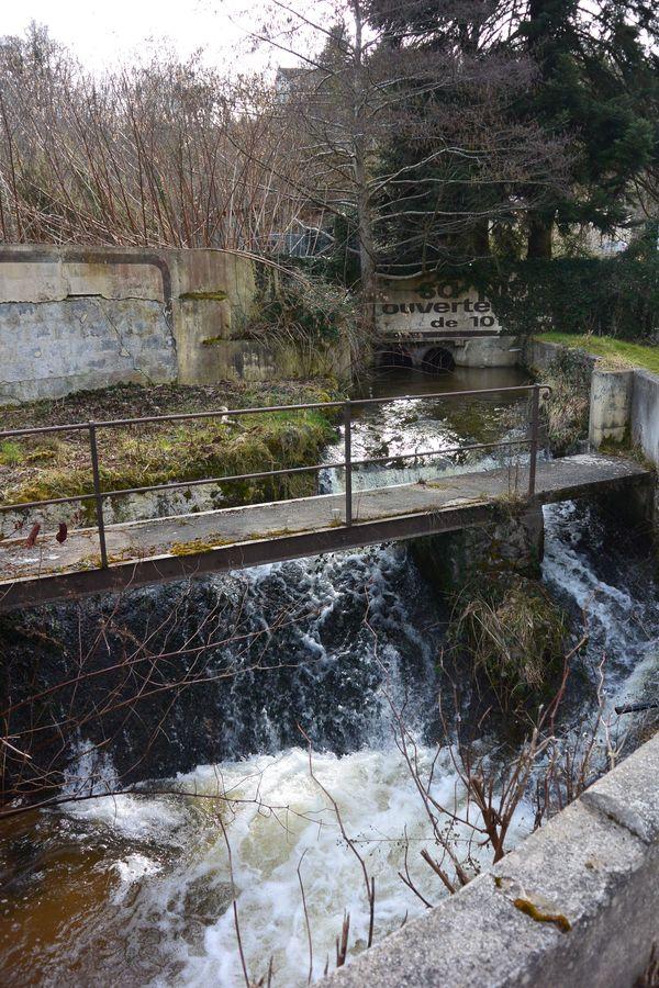Jonction Sardon ruisseau de Romeuf vallée de Sans Souci
