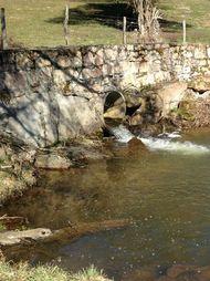 plan d'eau de la Prade servant (4)