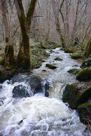 ruisseau de Romeuf Châtel-Guyon Vallée de Sans Souci