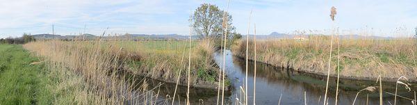 confluence Bec ou grande rase de Sarliève et Artière