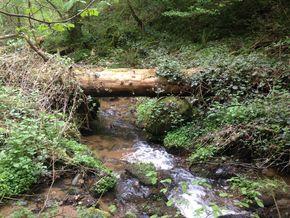 gorges de ceyrat ruisseau de Saint Genés1