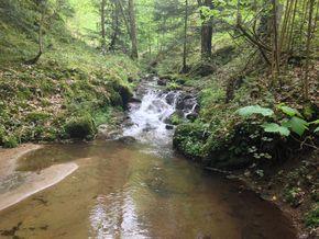 gorges de ceyrat ruisseau de Saint Genés2