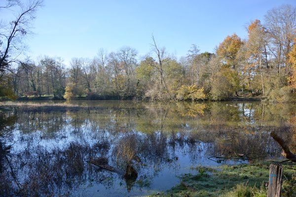 La confluence entre la Morge et l'Allier