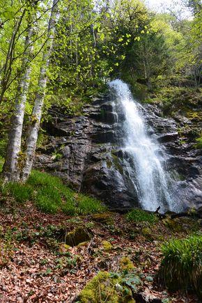 Cascade de la Volpie aval (1)