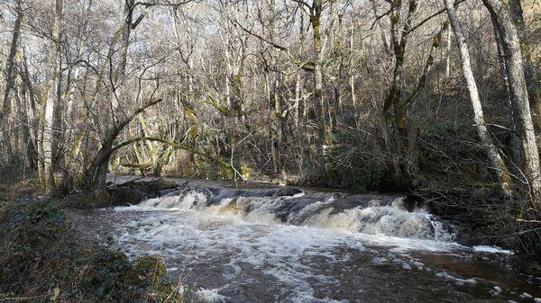 Le Tyx petite rivière des Combrailles