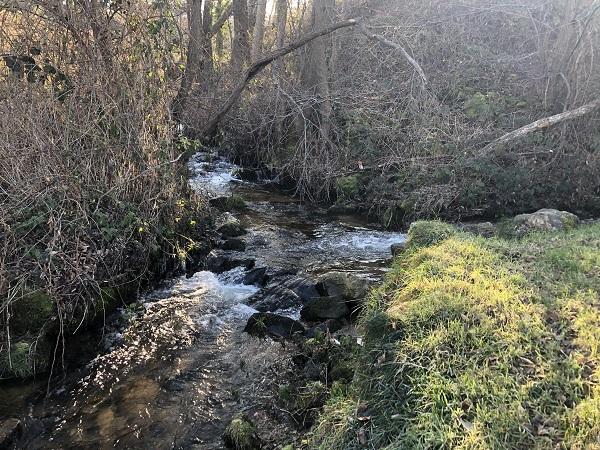 Confluence et naissance du ruisseau de Saint-Marcellin à Monistrol