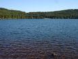 Le lac du bouchet : un coin de Canada en Auvergne?