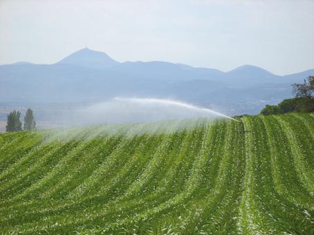 L'irrigation, une longue histoire