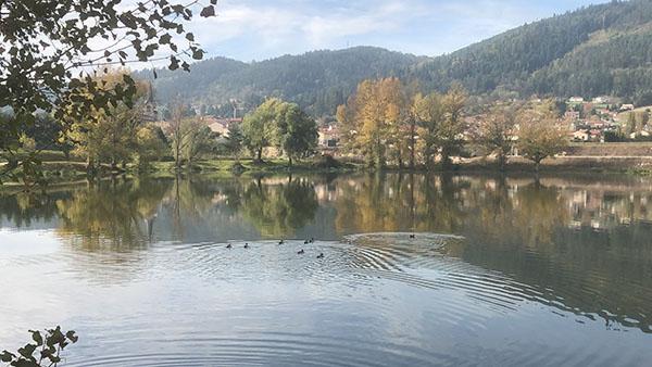 Bas-en-Basset et ses nombreux étangs