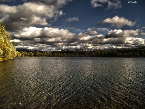 Photographies d'un étang à Pérignat sur Allier de Pierre Bonnel