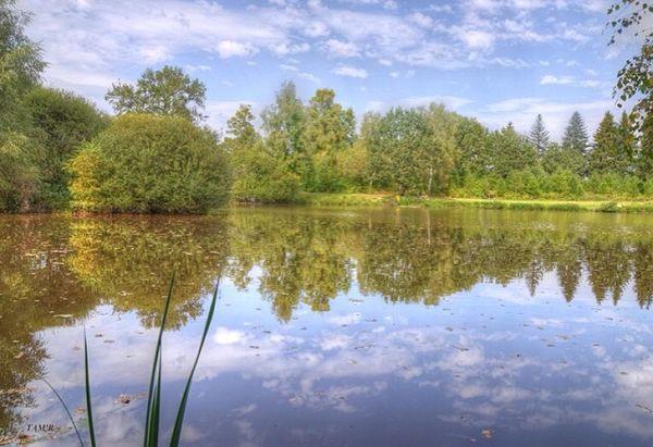 L'étang de Chancelade