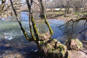 La confluence entre la Miouze et la Sioule